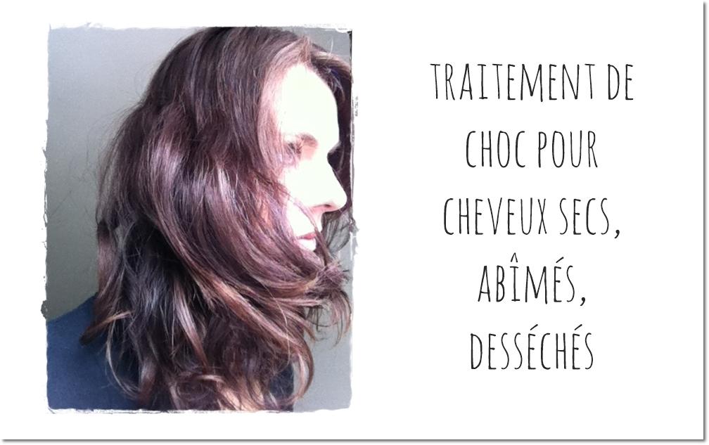 Traitement de choc pour cheveux secs, abîmés, desséchés