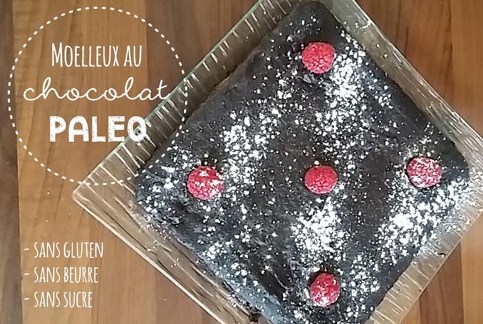 Gâteau moëlleux au chocolat et à la noisette sans gluten & paleo