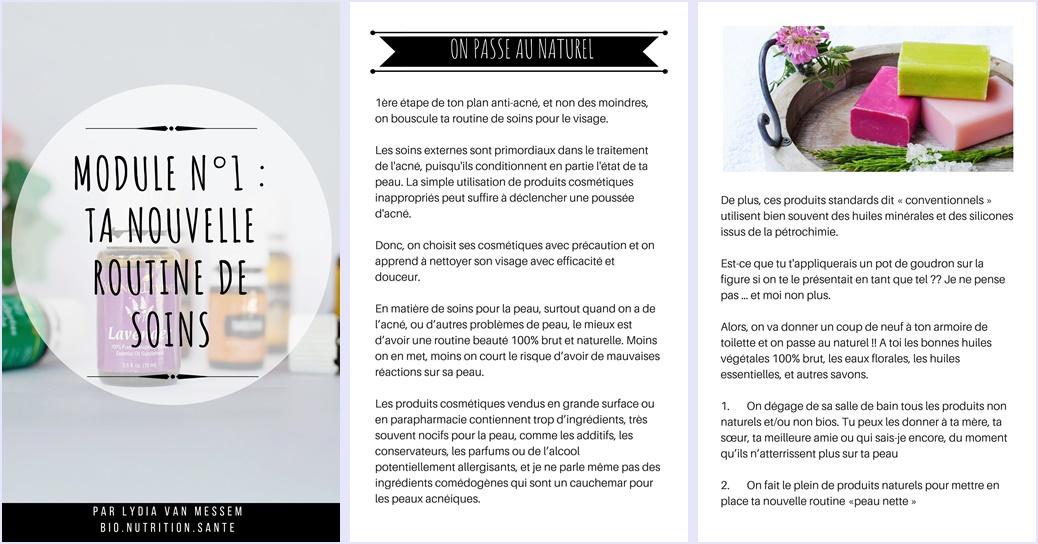 programme coaching anti acné peau nette avec ayurveda - bio nutrition santé